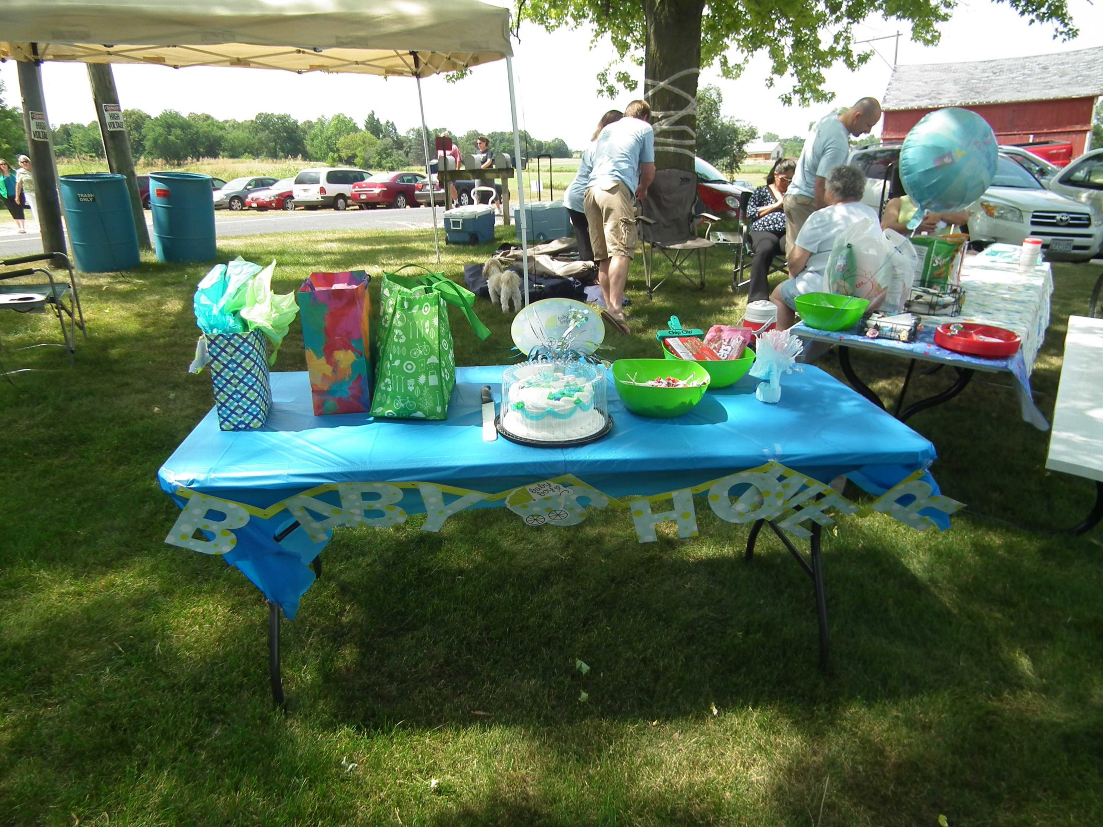 Baby shower for youngest baby at the reunion 6 days old